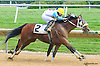 Just Irish winning at Delaware Park on 7/11/15