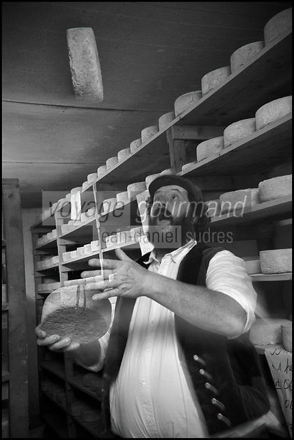 Europe/France/Bretagne/56/Morbihan/Sarzeau: Ferme fromagère de Sucinio, Gurvan Bourvellec y transforme le lait de petites vaches bretonnes pie noire,  Production du fromage: Tome de rhuys  et Élevage de vaches de race bretonne pie noire. <br />  [Non destiné à un usage publicitaire - Not intended for an advertising use]