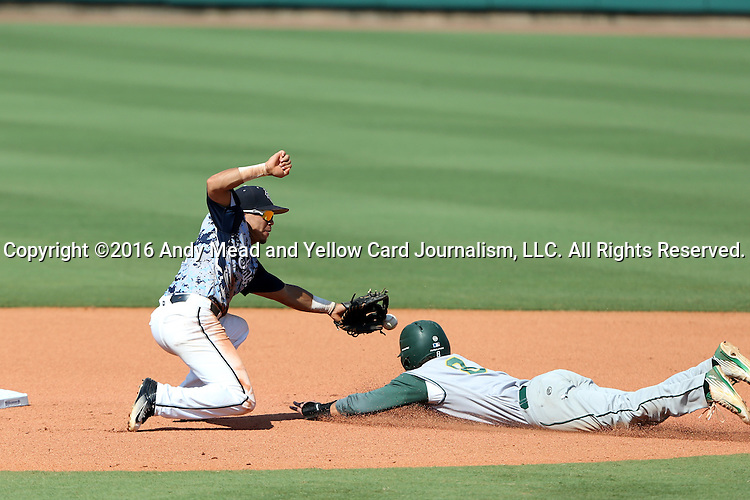 02 June 2016: Cal Poly Pomona's Chris Stratton (8) steals second base as the throw goes past Nova Southeastern's Jancarlos Cintron-Torres (left) and into the outfield. The Nova Southeastern University Sharks played the Cal Poly Pomona Broncos in Game 11 of the 2016 NCAA Division II College World Series  at Coleman Field at the USA Baseball National Training Complex in Cary, North Carolina. Nova Southeastern won the semifinal game 4-1 and advanced to the championship series.