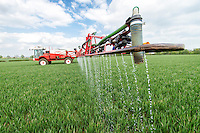 Applying liquid nitrogen to wheat - Lincolnshire, April