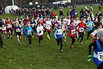2014-12-14 Holly Run 02 AB u11B
