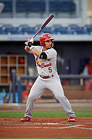 Palm Beach Cardinals first baseman Chris Chinea (5) at bat during a game against the Charlotte Stone Crabs on April 11, 2017 at Charlotte Sports Park in Port Charlotte, Florida.  Palm Beach defeated Charlotte 12-6.  (Mike Janes/Four Seam Images)