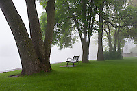 The Fox River and Island Park in Geneva, IL as seen in May. The tranquility of this 11 acre park is enhanced by the moody setting of a foggy morning.