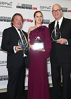 10 November 2017 - Beverly Hills, California - Richard Gelfond, Amy Adams, Greg Foster. 31st Annual American Cinematheque Awards Gala held at The Beverly Hilton Hotel. <br /> CAP/ADM/FS<br /> &copy;FS/ADM/Capital Pictures