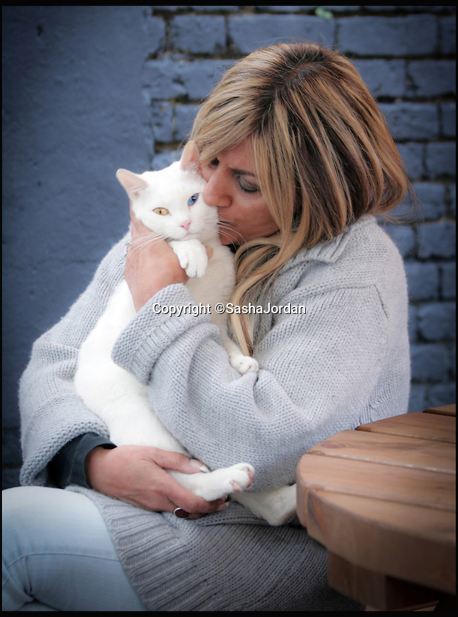 BNPS.co.uk (01202 558833)<br /> Pic: SashaJordan/BNPS<br /> <br /> Sasha Jordan with Turkish Van, Junior.<br /> <br /> A British woman who set up a Facebook page for her beloved pet cats has been left stunned after they attracted 1.2 million followers.<br /> <br /> Sasha Jordan said she spends up to five hours a day running the group that is dedicated to her seven cats - Rocky, Prince, Pixie, Ugs, Norman, Tom and Junior.<br /> <br /> Her time is taken up answering questions from fans of the moggies, who she has nicknamed the Magnificent 7 Cats, uploading photos of them and posting status updates.