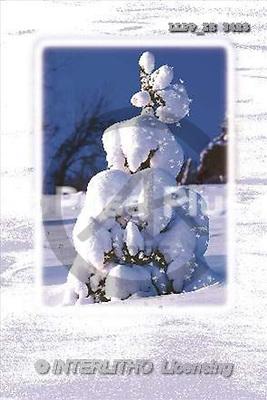 Maira, CHRISTMAS LANDSCAPE, photos(LLPPZS3423,#XL#) Landschaften, Weihnachten, paisajes, Navidad