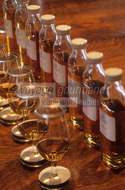 """Europe/Grande-Bretagne/Ecosse/Moray/Speyside/Keith : Distillerie Strathisia Whisky Chivas - Dégustation avec le maître assembleur de Chivas """"MAster Blender"""" - Détail des flacons de malt et des verres à dégustation"""