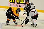 20150329  IIHF Eishockey Frauen WM 2015, Deutschland (GER) vs Japan (JPN)