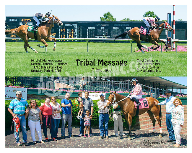 Tribal Message winning at Delaware Park on 6/9/16