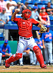 10 March 2012: Washington Nationals' catcher Sandy Leon in action against the New York Mets at Space Coast Stadium in Viera, Florida. The Nationals defeated the Mets 8-2 in Grapefruit League play. Mandatory Credit: Ed Wolfstein Photo