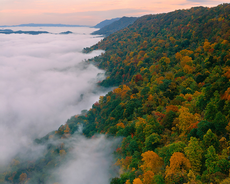 Low clouds and hillside in fall color viewed from the 12 O'Clock Overlook; Kingdom Come State Park, KY