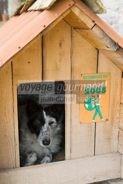 """Europe/France/Midi-Pyrénées/46/Lot/Lalbenque: Chambre et Table  d'Hôte """"La Vayssade"""" -  Vidocq le chien de la maison dans sa niche classée"""
