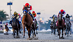 January 25, 2020: Mucho Gusto #10, ridden by Irad Ortiz, wins the Pegasus World Cup Invitational during the Pegasus World Cup Invitational at Gulfstream Park Race Track in Hallandale Beach, Florida. Chris Crestik/Eclipse Sportswire/CSM
