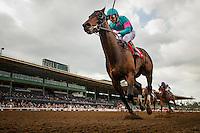 02-04-17 Santa Anita Stakes