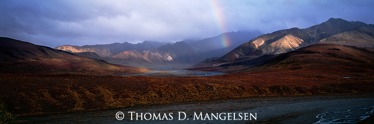 A rainbow extends from stormy skies to a valley below in Denali National Park, Alaska.