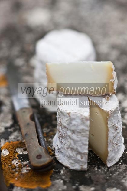 Europe/France/Poitou-Charentes/79/Deux-Sèvres/Villemain: Chabichou du Poitou de la Fromagerie à la ferme de Paul Gorgelet: Le Petit Boisselage