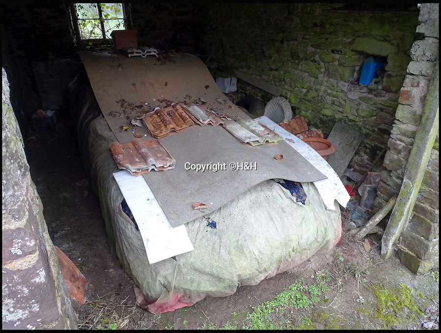 BNPS.co.uk (01202 558833)<br /> Pic: H&H/BNPS<br /> <br /> Even though this ramshackle old 'barn find' Jaguar has rusted away for the last 30 years it's expected to fetch £60,000 when it goes under the hammer. <br /> <br /> Having been holed away since the 1980s the 3.8L coupe is in desperate need of restoration, which experts say could cost up to £100,000.<br /> <br /> However as it's a 'matching numbers' machine, retaining its major factory-fitted components, once renovated the classic motor could be worth a quarter of a million pounds. <br /> <br /> The 1962 Jaguar E-Type 3.8L Coupe, with 63,000 miles on the clock, will be auctioned by H&H classics in Epsom, Surrey, on June 6.