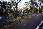 NEW YORK - OCTOBER 30:  An early and heavy snowstorm wrecked havoic on Central Park with heavy snow that downed many branches and trees on October 30, 2011 in New York City.  (Photo by Donald Bowers)