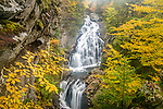 Fall foliage at Crystal Cascade in Pinkham Notch in the White Mountain National Forest, New Hampshire, USA