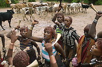 Ethiopia. Southern Nations, Nationalities, and Peoples' Region. Omo Valley. Turmi. Hamar tribe (also spelled Hamer). Pastoralist group. Hamar women wear an elaborately decorated goatskin, often colored with beads and cowries. Beaded necklaces, bracelets and waistbands adorn their bodies. They also wear thick copper necklaces announcing their marital status; a lather long tipped necklace and two copper necklaces if they are the first wife and only two copper necklaces if they are second, third, fourth wife to one man. Hamer women indulge in elaborate hairdressing by decorating their hair with clay and butter twisted into a striking long plait. A group of women is dancing before a ceremony in which a Hamar man comes of age by leaping over a line of cattle. On the afternoon of the leap, as guests gather, the man's female relatives demand to be whipped as part of the ceremony. The men, who have already jumped the cattle and are known as Maza, use long thin sticks and strike girls and women on their backs. No screaming is permitted by the men wielding the canes but the women don't care. Instead of fleeing, they beg the men to do it again and again until blood flows, dripping into the gritty red dust. This is a consensual act, with girls and women begging and singing to the men, so that they continue whipping them. It is not only a show of strength from girls and women, who proudly show off their scars, but it also symbolises their affiliation and loyalty towards their kin. The scars are a mark on how they suffered for their brothers and relatives. It also a legacy of an initiation rite that sees them beaten bloody. The Omo Valley, situated in Africa's Great Rift Valley, is home to an estimated 200,000 indigenous peoples who have lived there for millennia. Amongst them are 60'000 to 70'000 Hamar, an Omotic community inhabiting southwestern Ethiopia. They live in Hamer woreda (or district), a fertile part of the Omo River valley, in the Debub Omo Zone of the Southern Nat