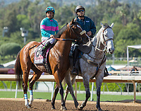 ARCADIA, CA APRIL 8: #8 Gormley ridden by Victor Espinoza in the post parade before the Santa Anita Derby (Grade l) on April 8, 2017 at Santa Anita Park in Arcadia, CA. (Photo by Casey Phillips/Eclipse Sportswire/Getty Images)