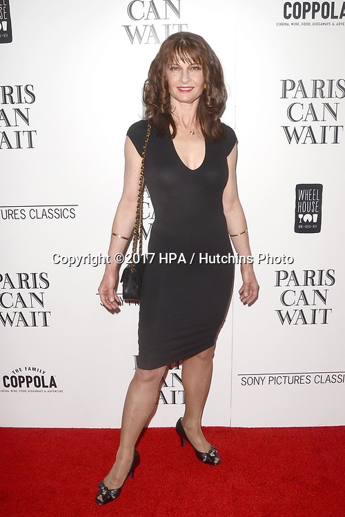 """LOS ANGELES - MAY 11:  Baeta Pozniak at the """"Paris Can Wait"""" Los Angeles Special Screening at the Pacific Design Center on May 11, 2017 in West Hollywood, CA"""