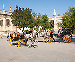 Horse and carriage rides for tourists through the historic central areas in Plaza del Triunfo, Seville, Spain
