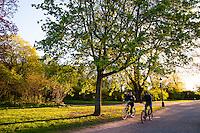 Nature scene around Djurgården