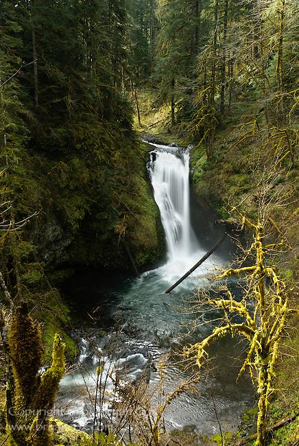 Lower Butte Creek Falls, Oregon