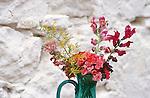 Omodos near Troodos, Blumen in Vase,  flowers in vase, Cyprus, Zypern