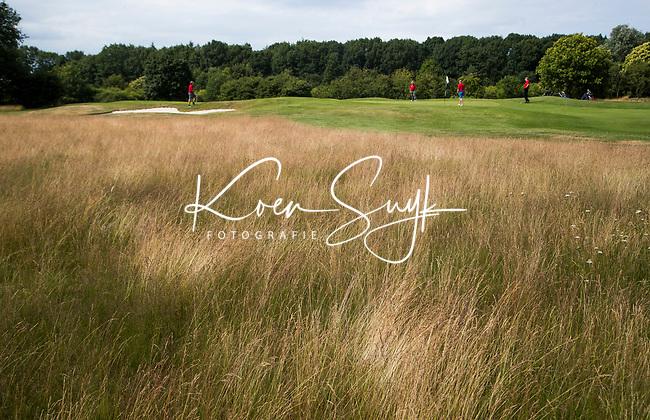 GROESBEEK - Nijmeegse baan hole 2. Rood Zwenkgras. Golfbaan Het Rijk van Nijmegen. COPYRIGHT  KOEN SUYK