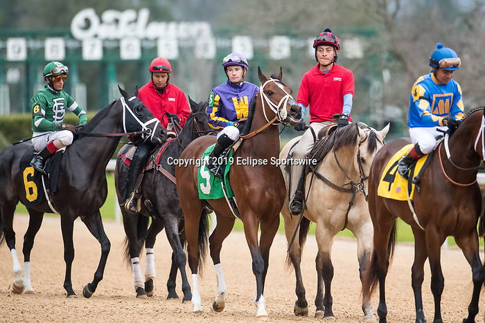 February 17, 2020: American Butterfly (5) with jockey Declan Cannon aboard during the Southwest Stakes at Oaklawn Racing Casino Resort in Hot Springs, Arkansas on February 17, 2020. Ted McClenning//Eclipse Sportswire/CSM