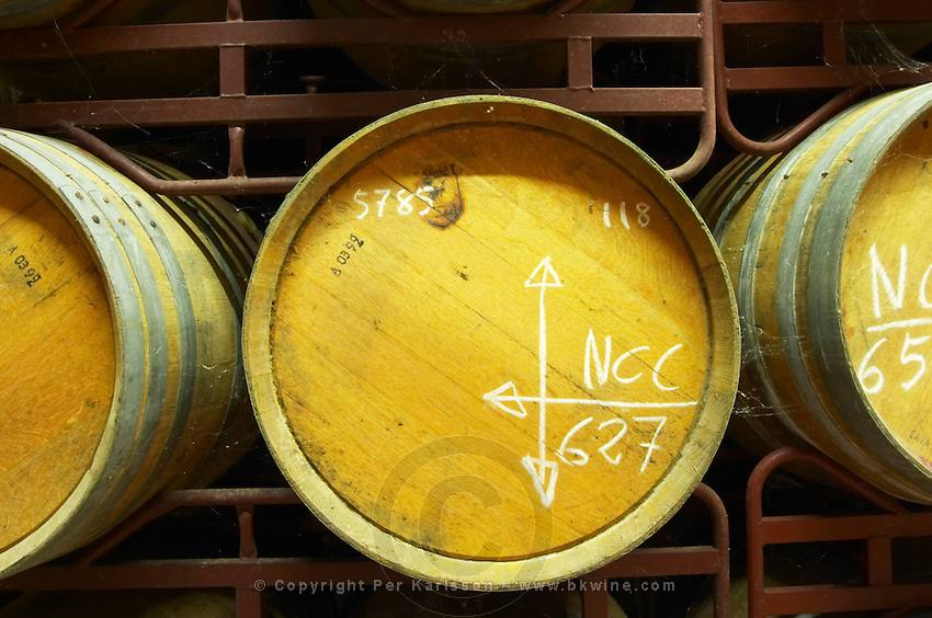 Oak barrel aging and fermentation cellar. Raimat Costers del Segre Catalonia Spain