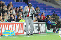 Cardiff City Stadium, Friday 11th Oct 2013. Wales manager Chris Coleman is not too happy with some of his teams actions during the Wales v Macedonia FIFA World Cup 2014 Qualifier match at Cardiff City Stadium, Cardiff, Friday 11th Oct 2014. All images are the copyright of Jeff Thomas Photography-07837 386244-www.jaypics.photoshelter.com