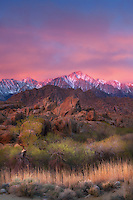 The alpenglow from first morning light on the Sierras in the distance.