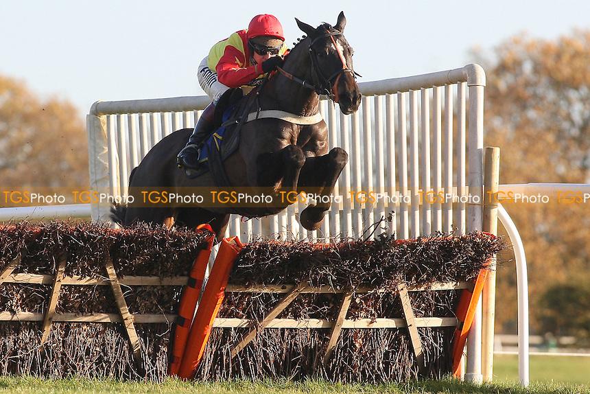 Jimbill ridden by Richard Johnson on the way to victory in the Hempton National Hunt Maiden Hurdle at Fakenham Racecourse, Norfolk - 12/12/11 - MANDATORY CREDIT: Gavin Ellis/TGSPHOTO - Self billing applies where appropriate - 0845 094 6026 - contact@tgsphoto.co.uk - NO UNPAID USE.