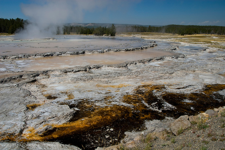 Geysers, Hot Springs, Mudpots and microorganisms of Yellowstone National Park.