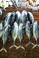 The bounty of Sri Lanka's coastline, especially along the South Coast around Galle can be seen at the numerous fish markets that open up along fishing villages with baracuda, tuna, swordfish, prawns and crabs.