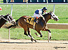 Mide As Well winning at Delaware Park on 9/27/14
