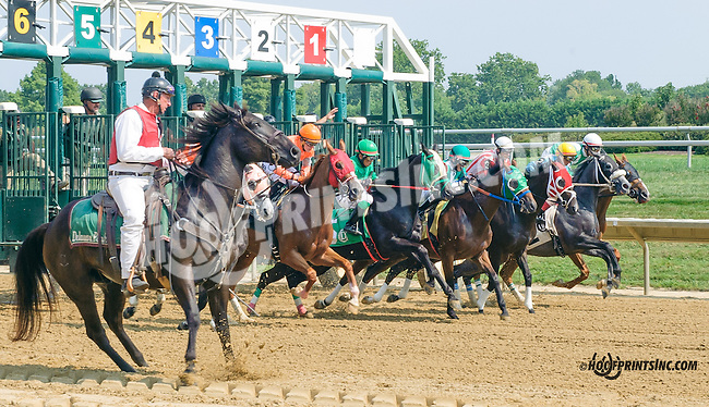 winning at Delaware Park on 9/1/15