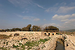 Israel, Carmel Coast Plain. The Roman dam at Taninim stream nature reserve