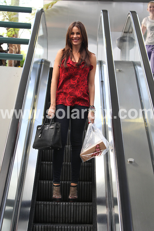 **ALL ROUND PICTURES FROM SOLARPIX.COM**                                             **SYNDICATION RIGHTS FOR UK, AUSTRALIA, DENMARK, PORTUGAL, S. AFRICA, SPAIN & DUBAI (U.A.E) & ASIA (EXCLUDING JAPAN) ONLY**                                                                                  Sofia Vergara goes Shopping In Brentwood, Los Angeles, on January 15, 2010                                                                            This pic:       Sofia Vergara                                                                                       JOB REF:    12668    PHZ       DATE:    16.01.11                                                        **MUST CREDIT SOLARPIX.COM OR DOUBLE FEE WILL BE CHARGED**                                                                      **MUST AGREE FEE BEFORE ONLINE USAGE**                               **CALL US ON: +34 952 811 768 or LOW RATE FROM UK 0844 617 7637**