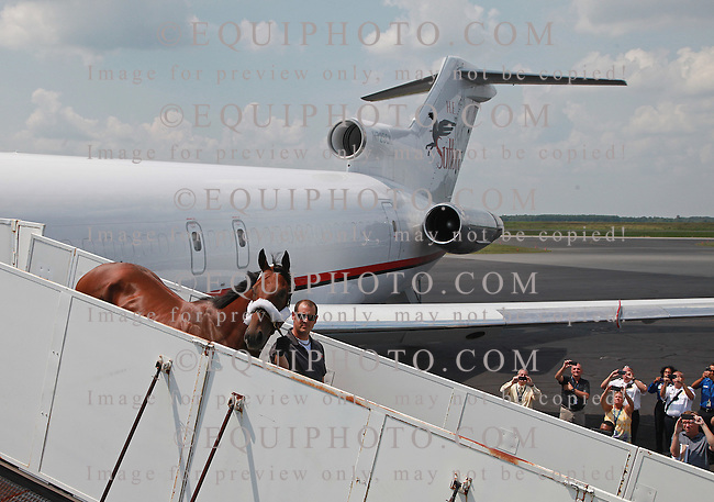 Triple Crown Champion American Pharoah is led off the plane by Jorge Alvarez at Atlantic City Airport in Egg Harbor Township, New Jersey on Wednesday afternoon July 29, 2015 on his way from California to the Jersey Shore at Monmouth Park in Oceanport, N.J. American Pharoah, will be the heavy favorite in Sunday's Grade 1 Haskell Invitational.  Photo By Bill Denver/EQUI-PHOTO.