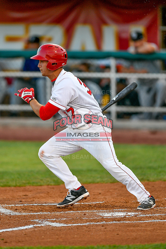 Matt Thaiss (37) of the Orem Owlz at bat against the Grand Junction Rockies in Pioneer League action at Home of the Owlz on July 6, 2016 in Orem, Utah. The Rockies defeated the Owlz 5-4 in Game 2 of the double header.  (Stephen Smith/Four Seam Images)