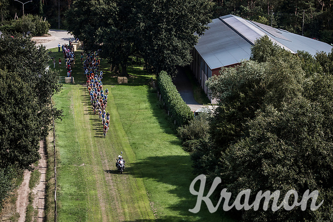 """Peloton riding a grass section<br /> <br /> Antwerp Port Epic 2018 (formerly """"Schaal Sels"""")<br /> One Day Race: Antwerp > Antwerp (207km of which 32km are cobbles & 30km is gravel/off-road!)"""