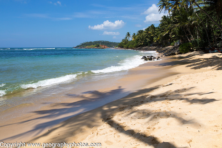 Tropical landscape of palm trees and sandy beach, Mirissa, Sri Lanka, Asia shadow of palm tree