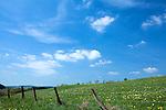 Europa, DEU, Deutschland, Rheinland-Pfalz, Eifel, Vulkaneifel, Reuth, Fruehling, Landschaft, Blauer Himmel, Wolken, Zaun, Weidenzaun, Kategorien und Themen, Natur, Umwelt, Landschaft, Jahreszeiten, Stimmungen, Landschaftsfotografie, Landschaften, Landschaftsphoto, Landschaftsphotographie, Wetter, Himmel, Wolken, Wolkenkunde, Wetterbeobachtung, Wetterelemente, Wetterlage, Wetterkunde, Witterung, Witterungsbedingungen, Wettererscheinungen, Meteorologie, Bauernregeln, Wettervorhersage, Wolkenfotografie, Wetterphaenomene, Wolkenklassifikation, Wolkenbilder, Wolkenfoto<br /> <br /> [Fuer die Nutzung gelten die jeweils gueltigen Allgemeinen Liefer-und Geschaeftsbedingungen. Nutzung nur gegen Verwendungsmeldung und Nachweis. Download der AGB unter http://www.image-box.com oder werden auf Anfrage zugesendet. Freigabe ist vorher erforderlich. Jede Nutzung des Fotos ist honorarpflichtig gemaess derzeit gueltiger MFM Liste - Kontakt, Uwe Schmid-Fotografie, Duisburg, Tel. (+49).2065.677997, archiv@image-box.com, www.image-box.com]