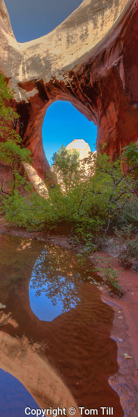Otho Natural Bridge, Proposed La Sal Waters Wilderness, Utah  Near Moab, Colorado River