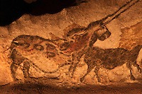 Europe/France/Aquitaine/24/Dordogne/Périgord Noir/Montignac: Grotte de Lascaux II - Grottes ornée  paléolithique - La Licorne,  [Non destiné à un usage publicitaire - Not intended for an advertising use]