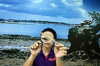 A student studies a feather through a magnifying glass during a conservation education class in Zhanjiang, Guangdong Province. Over the past century, the world has lost over 50% of its coastal mangroves. They have been cleared mainly to make way for commercial shrimp and fish farms. The unique trees which live in salt water are valued for the ability to protect shorelines and are home to a diverse array of flora and fauna. 2010